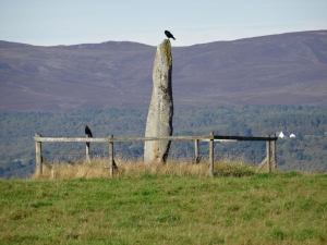 Edderton Stone near the Balblair Distillery