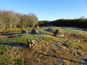 Edderton's Stone Circle (1) - 28 11 2016